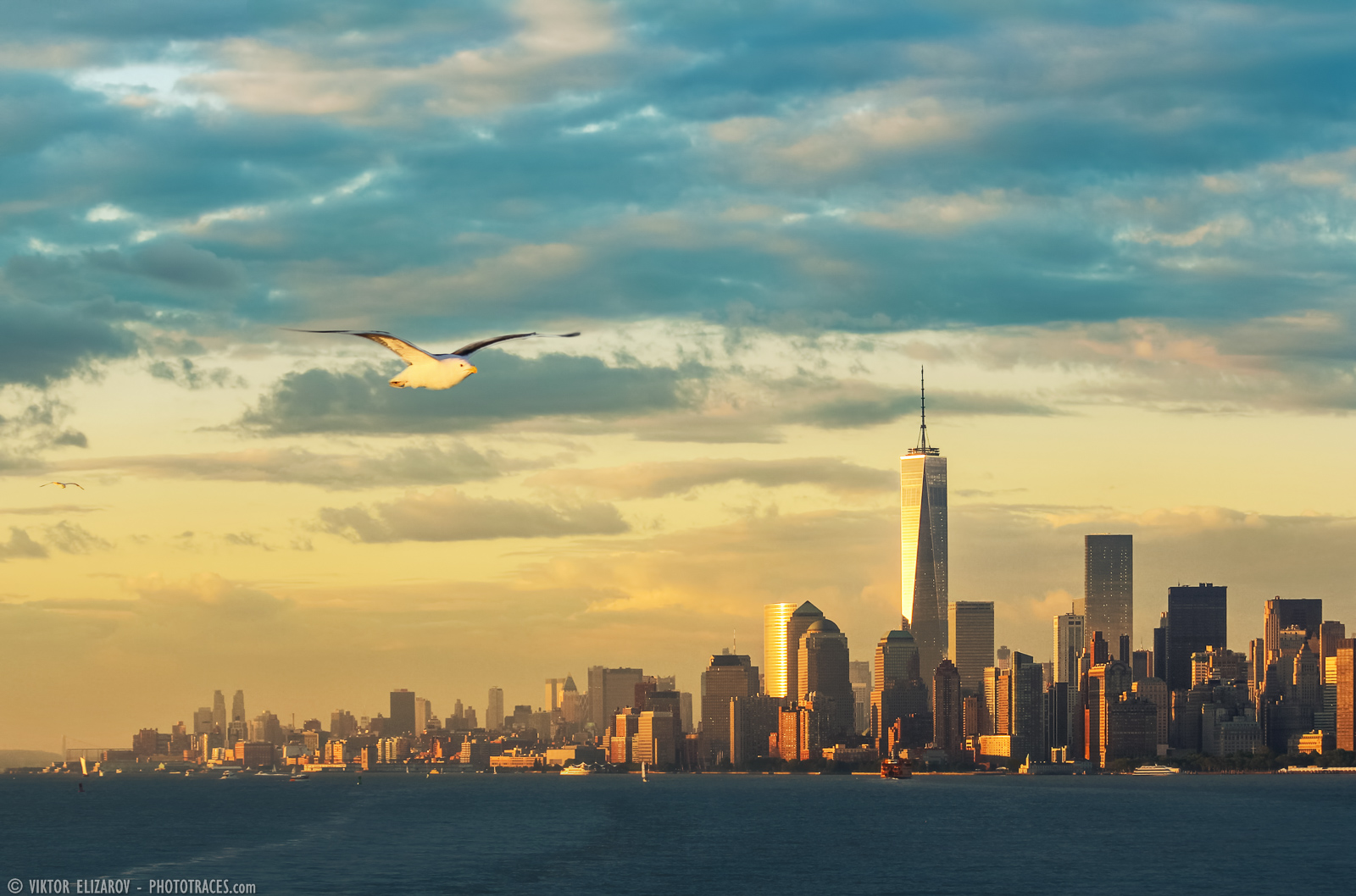 Travel_Photography_Blog_New-York_Manhattan_Sunset_Bird.jpg
