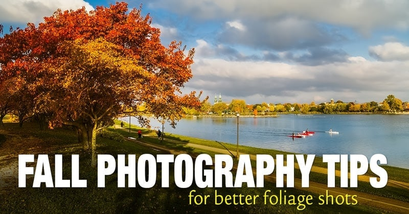 Top 10 Fall Photography Ideas for Better Foliage Photos