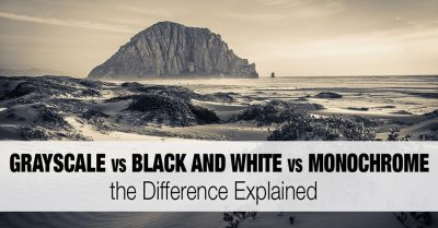 Grayscale vs Black and White vs Monochrome: the Difference Explained