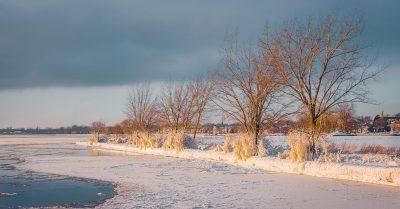 Frozen Montreal