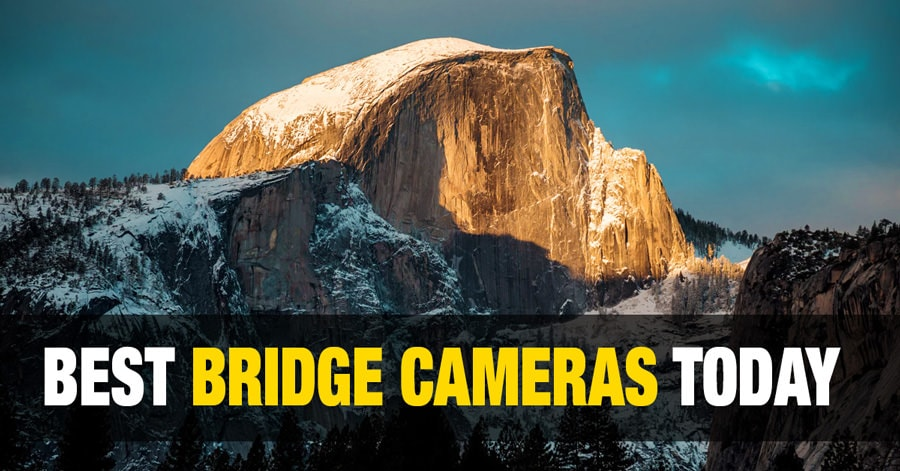 Best Bridge Cameras Today for Every Budget