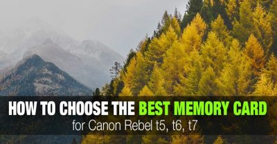 Tips for Selecting the Best SD Memory Cards for Canon  Rebel t5, t6, or t7