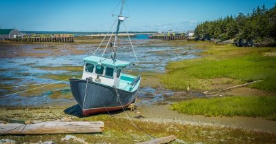Low Tide at White Head Harbour (New Brunswick)
