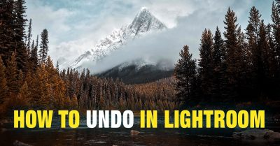 How to Undo in Lightroom (6 Different Ways)