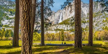 Cook's Meadow View (California)