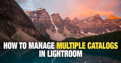 How to Merge Lightroom Catalogs