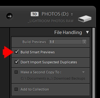 Lightroom Smart Previews - When, Why and How to Use Them