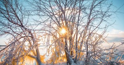 Translucent Icy Panorama (Montreal)