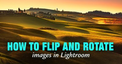 How to Rotate Image in Lightroom (5 Methods)