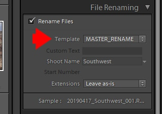 Lightroom Import - File Renaming