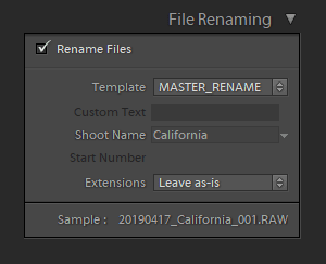 The File Renaming Panel in Lightroom Import Module