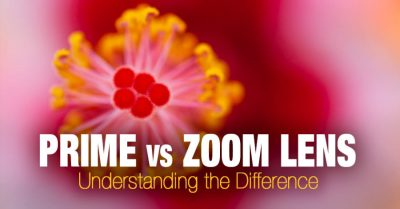 Prime Lens vs Zoom Lens - Which One Is Right for You?