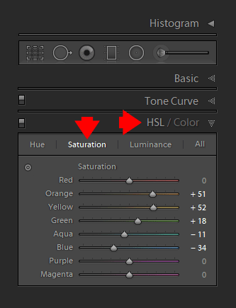 Saturation in Lightroom using HSL (Hue Saturation Luminance) Panel