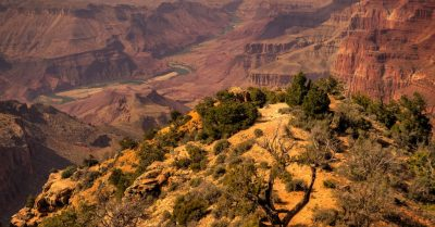 Grand Canyon's Amazing Textures (Arizona)