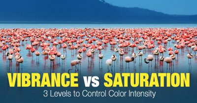 Vibrance vs Saturation