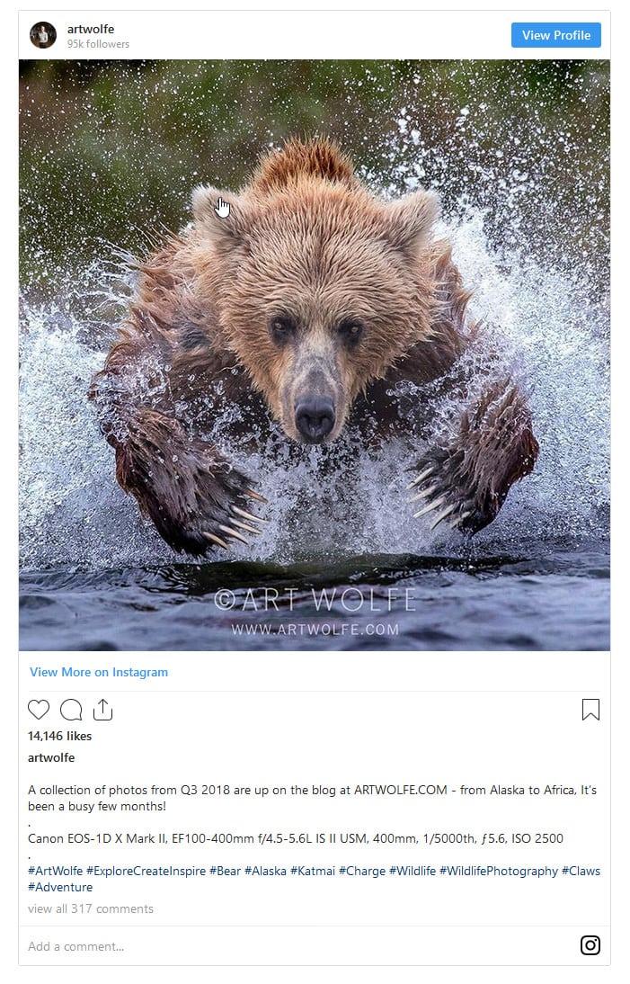 Art Wolfe Instagram