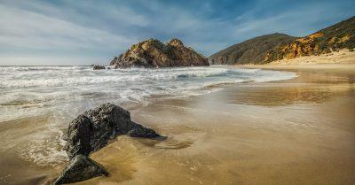 Pfeiffer Beach Sea Creature (California, Big Sur)