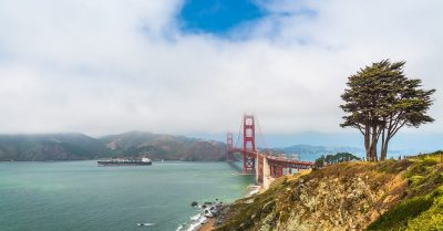 Foggy San Francisco Bay (California)