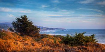 Moonstone Beach Contrasting Colors (California)
