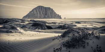 Morro Bay Dunes at Sunset (California)