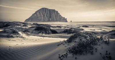 Morro Bay Dunes at Sunset (California)