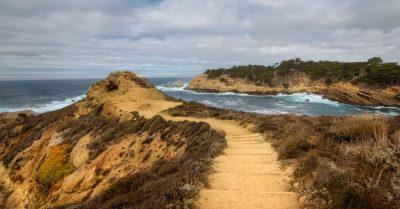 Point Lobos Sea Lion Point Trail (California)