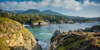 Pelican Point at Point Lobos (California)