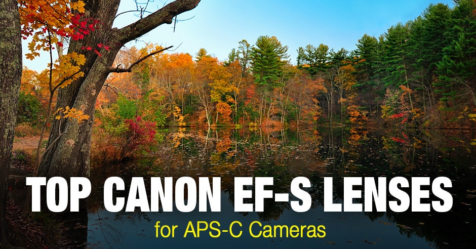Top Canon EF-S Lenses for APS-C Cameras