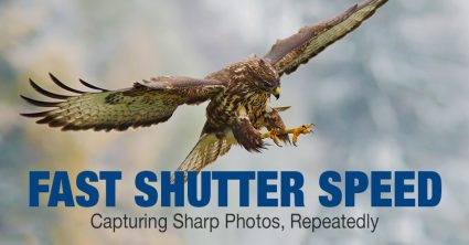 Fast Shutter Speed Explained: Capturing Sharp Photos, Repeatedly