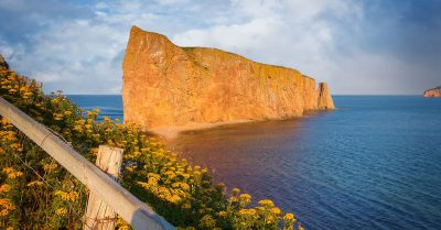 Percé Rock Flowers (Quebec)