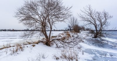 Winter Landscape at the River (Montreal)