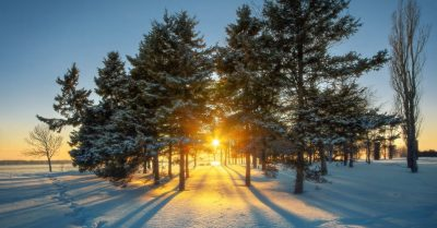 Winter Wonderland in Montreal (Canada)