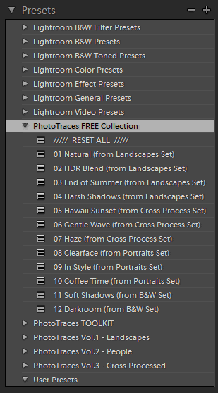 How to Use Lightroom Presets Tutorial - Presets Panel