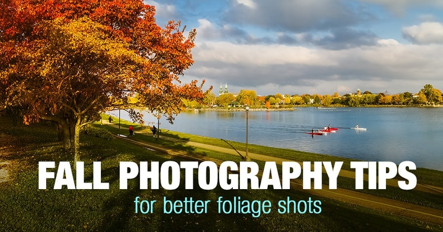 Top 12 Fall Photography Ideas for Better Foliage Photos