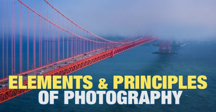 What Are the Elements and Principles of Photography?