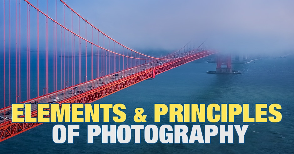 Elements of Photography and Principles of Photography